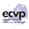 ECVP Exam 2021