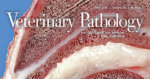 Update for Veterinary Pathology Journal