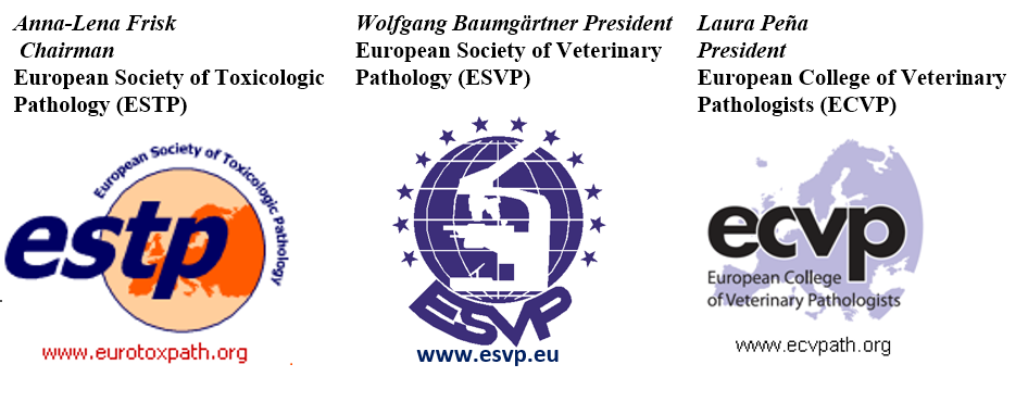 Postponement of Joint European Congress of the ESVP, ESTP and ECVP in Torino