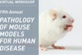 19th Annual Workshop on the pathology of mouse models for human disease –  virtual event